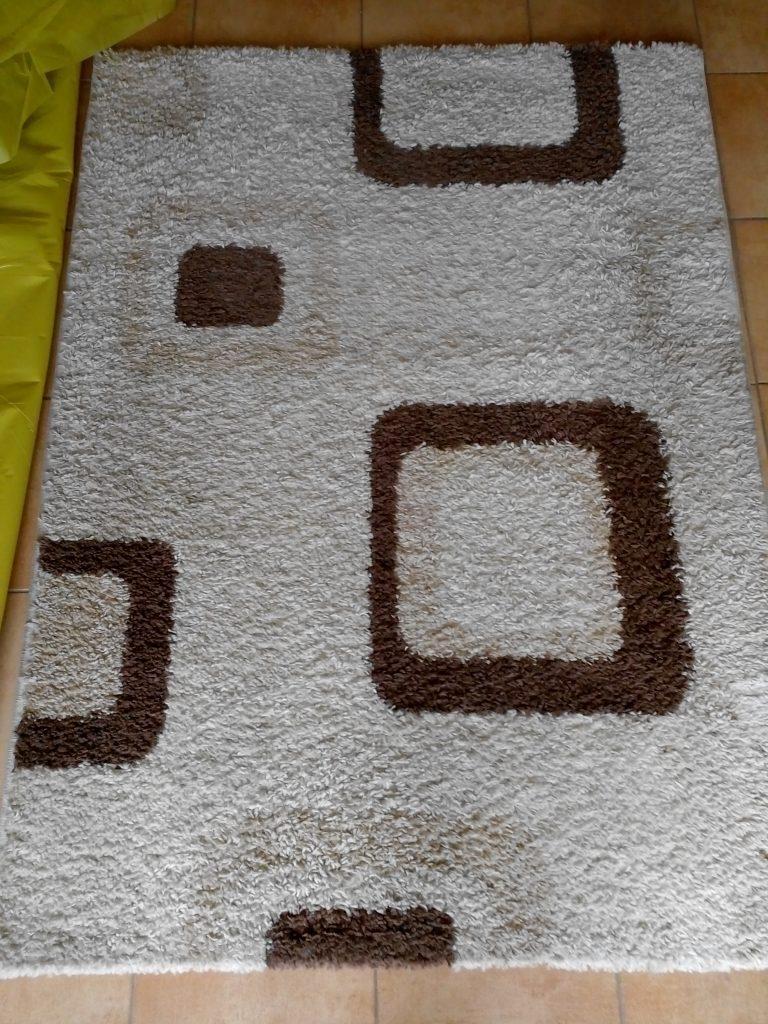 Pranie dywanów i wykładzin Gdańsk, Gdynia, Trójmiasto