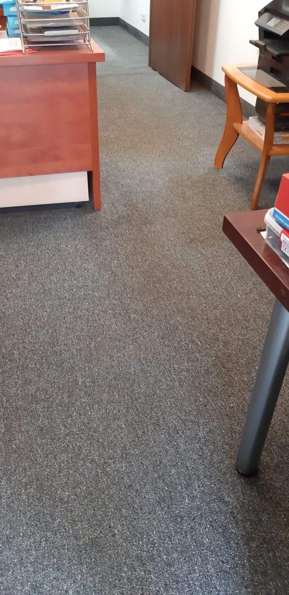 czyszczenie wykładziny Gdańsk